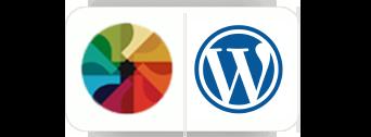 newpatth wild apricot web site design wordpress